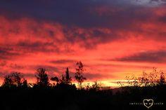 #Fire #Sun #Sunburn #Fields #Casablanca #Chile #Roadtrip #Nature #Landscape #Sundset #Sky #Impulse #Earth #Miss #Miri #Travel #Photography