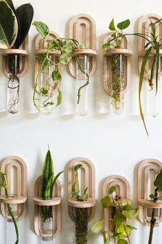 I'm back with another fun DIY or Buy project! DIY or Buy is exactly how it sounds! I am sharing a step by step tutorial for how to DIY, and for those that would rather Room With Plants, House Plants Decor, Plant Decor, Plant Wall Diy, Indoor Garden, Garden Plants, Indoor Plants, Water Plants, Potted Plants