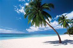 Fin de año en el Caribe.