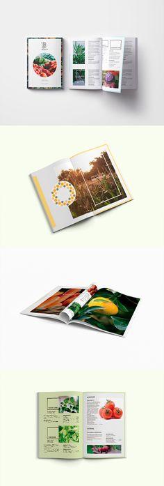 Para el diseño del catálogo se han empleado diferentes tipografías y colores en función de las diferentes líneas de productos.