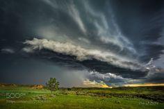I Stand Alone (Derek Burdeny / Omaha / USA) #NIKON D600 #landscape #photo #nature