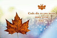 La vida misma es un regalo :D Close My Eyes, Leaf Tattoos, That Look, Feelings, Autumn, Frases, The Soul, Gift, Life