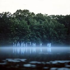 Surreal Light Scenes Created Deep Within Nature by Barry Underwood - My Modern Met