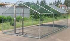 Our extra large poultry pen provides a high quality area for your poultry to be safely secured in. Walk In Cage Run for Chicken Cat Rabbit Ducks. 1 x20' x 10' Walk In Cage Run. Also ideal for a fruit Cage to stop your hard earned harvest being taken away. | eBay!