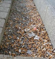 Cigarette butt litter is a major problem at our beaches, in the ocean and throughout the watersheds which carry water, trash and debris to our beaches. Cigarette butts discarded in parking lots, along sidewalks and in street gutters miles from the coast inevitably make their way through storm drains, creeks and rivers to the beach and the ocean. Direct litter of cigarette butts at the beach adds to the problem. It isn't just a matter of unsightly trash and litter. Toxins from cigarettes…