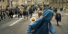An army of dogs rises in trailer for 'White God'