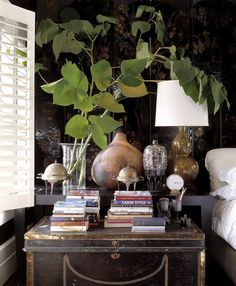 Cluttered but somehow it works out - greenery, light, vintage trunk to hold a few stacks of books for browsing.