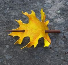 leather oak leaf hair pin. i like it. Would love to have one in that orange red from maple leaves in New England.