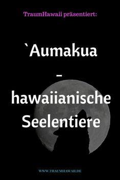 Tiere spielen eine große Rolle als spirituelle Führer oder Wegweiser in der hawaiianischen Tradition und sind Teil einer Kultur, die sowohl das Sichtbare als auch das Unsichtbare honoriert. Sie werden Aumakua genannt. Im traditionellen/alten Hawaii verschmolz der spirituelle Weg mit den belebten und unbelebten Wesen, wie Tiere, Steine, Bäume, das Meer, der Mond, die Sonne usw. Tiere galten als Boten, die Orientierung auf dem Weg und im Alltag gaben. #seelentiere #traumhawaii #aumakua Pearl Harbor, Aloha Spirit, Beste Hotels, Big Island Hawaii, Kauai Hawaii, Beautiful Islands, Beautiful Places, Travel Agency, Have Fun