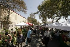 Claremont Village Farmer's & Artisan's Market every Sunday from 8am - 1pm in Claremont, Ca.    *Photo by Harold Barnes