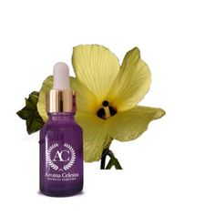 Fragrance of Lilly is very popular globally. Once it's applied on clothe sits fragrance last for longer period of time. Lily oil is used more many purposes like to cure varicose veins and it's also applied on cuts and wounds,it's applied on dry skin, it's also used to treat dark circles and dark spots.