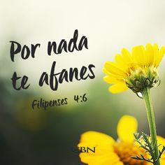 Dios cuida de cada detalle en mi vida, aún cuando siento que está lejos, es cuando más cerca está. #Élprovee #Cuidademi