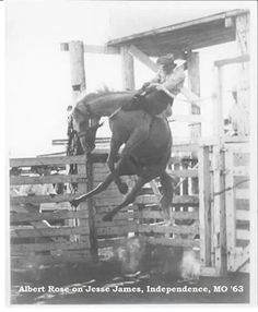Bucking Bronc now that is coming out high,wide and handsome. Rodeo Cowboys, Real Cowboys, Horse Pictures, Cool Pictures, Cowboy Films, Rodeo Rider, Bull Riding, Horse Trailers, Cowboy And Cowgirl