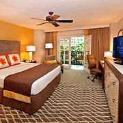 Gaylord Palms King Sunset Guest Room
