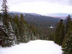Borovets ski resort, Bulgaria - Sitnyakovo ski center Ski Pass, Ski Season, Bulgarian, Skiing, Seasons, Places, Travel, Outdoor, Ski
