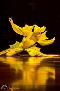 Varekai - Cirque du Soleil en Costa Rica 2013 | Flickr - Photo Sharing!