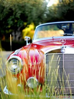 red Mercedes-Benz behind the grass | Keep The Glamour ♡ ✤ LadyLuxury ✤