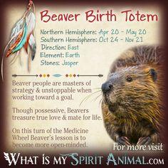 Beaver Native American Zodiac Sign Birth Totem 1200x1200