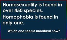 Homosexuality is found...