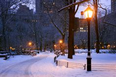 Early Morning at Madison Square Park, New York City, New York, A by Joe Daniel Price on 500px