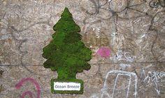 Moss graffiti eco graffiti green graffiti
