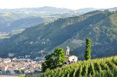 Tain l'Hermitage Drôme drome vin vignoble vignes http://www.vin-gastronomie-drome.com/