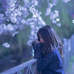 """snap No.83"" . . . snap shot 夜桜遊び . . 撮りたい物の前で真剣に構図を考え 悩んでる彼女が可愛い件。 . . #cherryblossom  #桜"