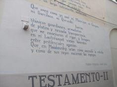 poetry on public walll Leiden