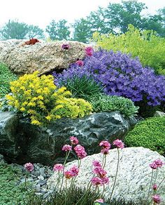 Rock Garden- my next project! I have a sloping hill along the drive that would be perfect for this!