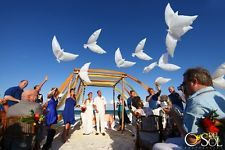 White Dove Wedding Decoration Foil Balloon Helium Church Ceremony Party Marriage