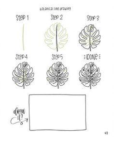Image result for Botanical Line Drawing