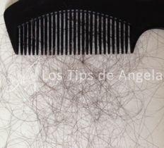 Caída del cabello - 100 cabellos perdidos cada día es normal. http://www.lostipsdeangela.com/2014/11/caida-de-cabello-que-hacer.html