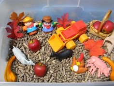 JADA ROO CAN DO: Harvest Time Down On The Farm Sensory Bin ~September