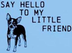 Little friend quote via www.Facebook.com/CuteChihuahuaFans