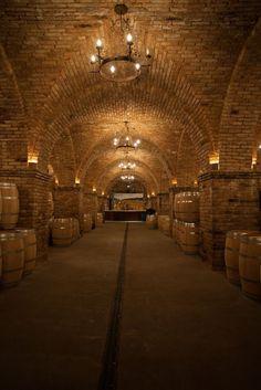 Beautiful subterranean wine room Or man cave in Napa Valley, CA. #napa #california