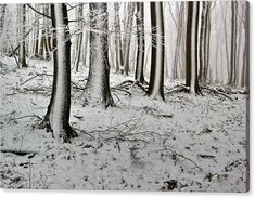 Winter Canvas Print featuring the photograph Winter tale by Ren Kuljovska Canvas Art, Canvas Prints, Art Prints, Very Beautiful Images, Snowy Forest, Winter's Tale, Fine Art Photography, Art For Sale, Fine Art America