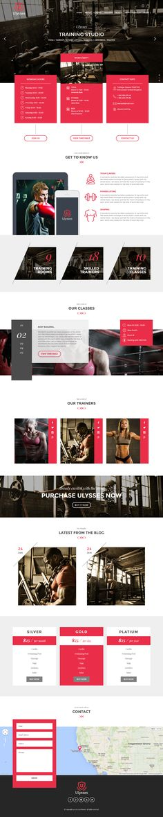 ULYSSES is a modern WordPress theme for your gym, fitness or sport center. #webdesign Download: http://themeforest.net/item/ulysses-gym-fitness-wordpress-theme/10342005?ref=ksioks