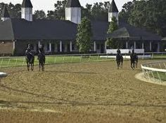 the gallops at Gio's racetrack