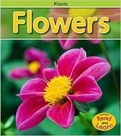 plants unit : Flowers (Plants): Patricia Whitehouse: 9781410934796: Amazon.com: Books