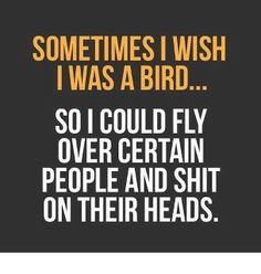 Sometimes I wish I was a bird!    And I know exactly who i would start with! lol