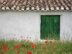 Pepe's house | Flickr - Photo Sharing!