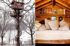 Insane treehouse