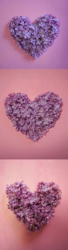 lilac heart ♡