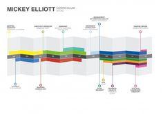 Curriculum Vitae Infographic