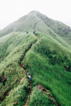 Mt. Batulao | Batangas, Philippines (by Joseph Oropel)