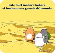 El inodoro Sahara, el inodoro más grande del mundo.