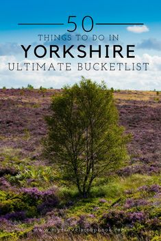 The Ultimate Yorkshire Bucket List! Yorkshire is one of the UK's most beautiful places but what can you do and see there? In this Yorkshire destinations travel guide find out the 50 things to do and see in Yorkshire. Yorkshire England, Yorkshire Dales, Visit Yorkshire, North Yorkshire, Europe Travel Tips, Travel Abroad, Travel Uk, Travel Guides, Family Travel