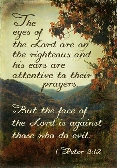 """1 Peter - """"The eyes of the Lord are on the righteous, and his ears are attentive to their prayer. But the face of the Lord is against those who do evil. Bible Verses Quotes, Bible Scriptures, Faith Quotes, Healing Scriptures, Heart Quotes, Biblical Verses, Daily Scripture, Prayer Quotes, Religious Quotes"""