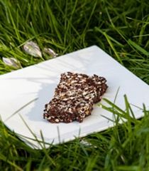Chocolate Chia Bars | Chia seeds, almonds, medjool dates, cocoa powder, vanilla extract, almond extract.