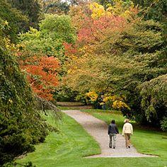 Washington Arboretum Park - Seattle, WA